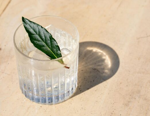closeup of an iced cocktail with a bay leaf on top